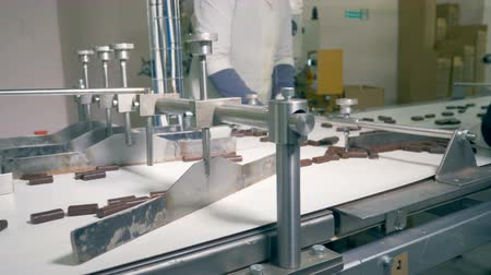 sorted : Chocolate candies are moving along the conveyor and then are being sorted by workers