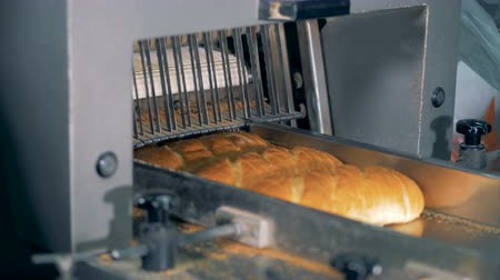 slicer : Long loaf cutting machine cuts bread at the bakery. Bread-slicer working.
