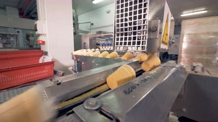 opłatek : Wafer cups filled with ice-cream are being pushed along the conveyor in a factory facility