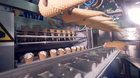 plněné : Empty wafer cones are being put into a factory machine while cones filled with cream are getting displaced from one conveyor onto another one Dostupné videozáznamy