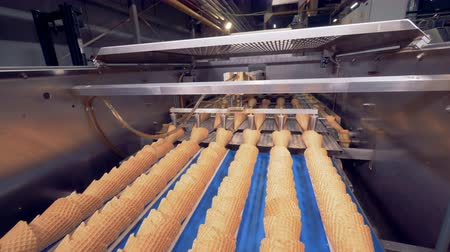 identical : Wafer cones are being placed into each other in several rows by an industrial mechanism