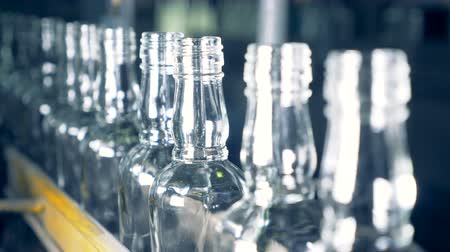 vítreo : A row of identical vitreous bottles with shaped necks is moving along the conveyor