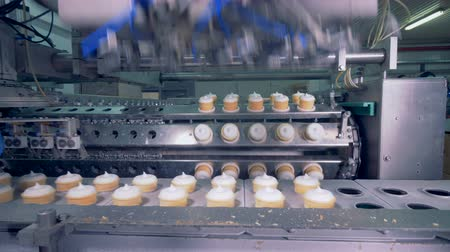 opłatek : The process of ice-cream production line on a factory. Wideo