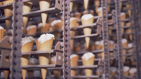 se movendo para cima : Close-up view on ready ice-cream cones in cooling chamber. 4K.