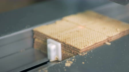 opłatek : Production line with ready made waffles. Close-up. Wideo