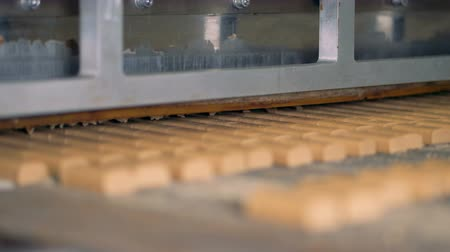 sterility : Close-up view on the  special equipment for cutting sweets at candy factory. Stock Footage