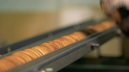 manual labor : Manual work on a conveyor with cookies. Stock Footage