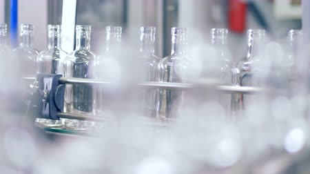fermenting : Assembly line with bottles at a factory. Stock Footage