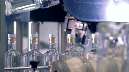 pivovar : Bottles move on a line to be tested on a special machine. 4K.