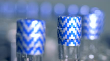 bung : Blue and white packaging on the bottles, close up.