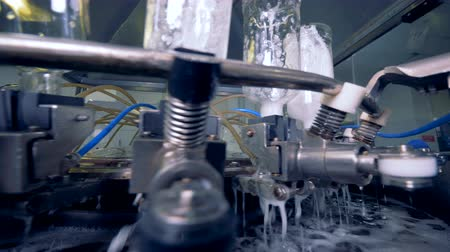 sterility : Water flows out of bottles after cleaning. 4K. Stock Footage