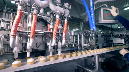 opłatek : Worker control ice-cream production process at a factory conveyor.