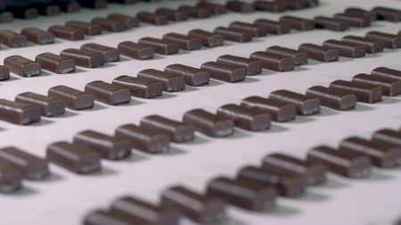 cacao : Sweet candies go on a conveyor, close up.