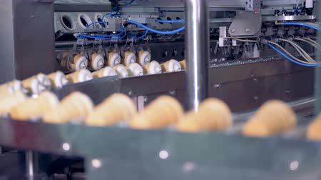 onto : Blocks of ice-cream in wafer cups are getting put onto the conveyor belt by metal tongs Stock Footage