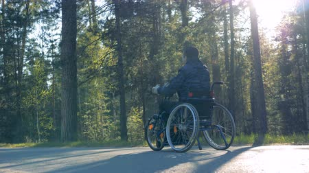 challenged : Forest alley with a physically challenged man moving in a training wheelchair Stock Footage