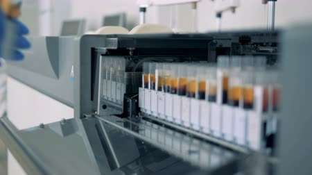 suporte : Laboratory worker puts blood samples into a machine to perform tests. 4K. Stock Footage