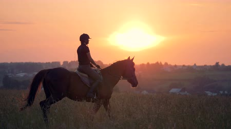 juba : A rider goes on a horse, slow motion.