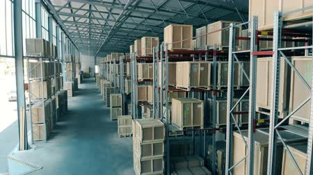 crate : Lots of boxes in a warehouse. Stock Footage