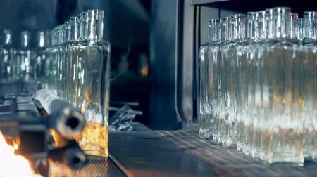 fire facilities : Empty bottles move on a line, close up. Stock Footage