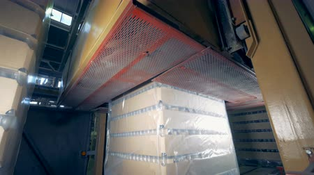 wrapped up : Special machine deaerates wrapped boxes, close up. Packing process at a factory. Stock Footage
