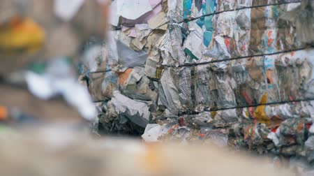 сортировать : Packs of paper waste, close up. Pressed paper is packed at a special factory for recycling.
