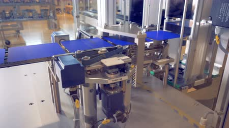 üreten : Solar module cells are being adjusted while moving along the conveyor belt.