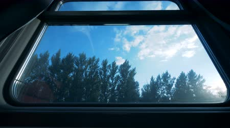 двухместная карета : View from a compartment train carriage. Big window in a carriage, forest outside. Стоковые видеозаписи