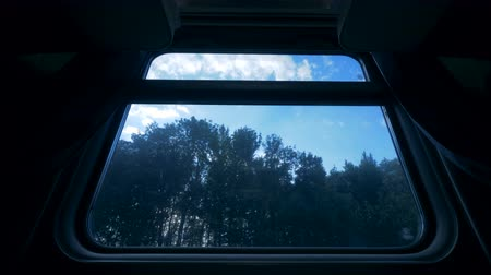 se movendo para cima : Forest outside train window, close up. Moving train on a railroad goes near a forest. Stock Footage
