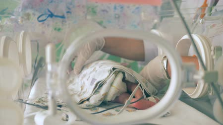 intensive care unit : A nurse takes care of a newborn baby, close up.