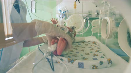 intensive care unit : Medical worker takes a newborn baby, close up.