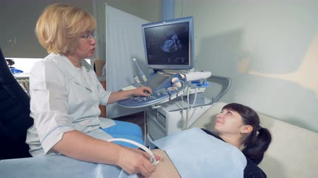 прибор : Female gynecologist and a pregnant woman during sonography