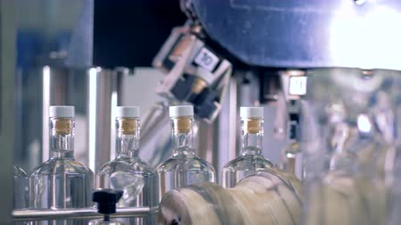 wódka : Full bottles go on a line for check, close up. Automatic factory equipment.