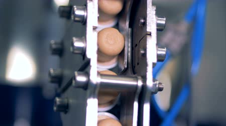 kurk : Cork lids on a conveyor, close up.
