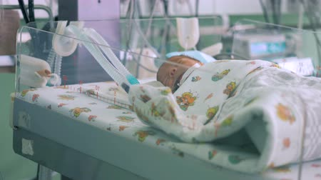 intensive care unit : Newborn baby connected to respiratory system in a medical box