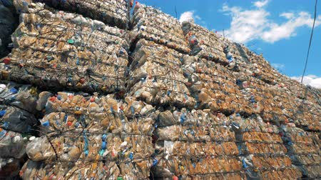 riciclabile : Lots of pressed plastic bottles at a dump, close up.