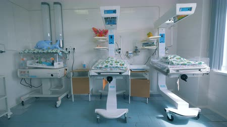 zayıf : Hospital unit with newborn babies lying in boxes Stok Video