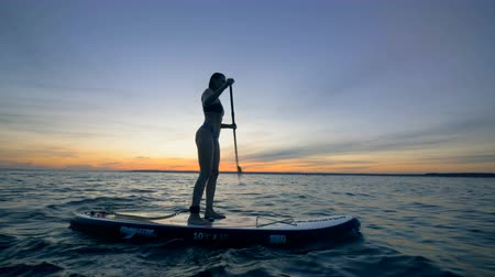 soupis : Slim lady is sailing across open water on her paddleboard. Summer Fun Action Sports.