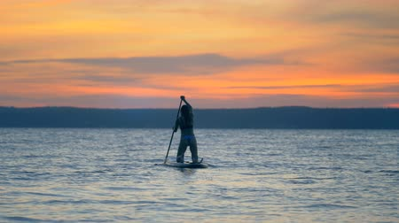 ajoelhado : Active lifestyle concept. Lady paddling on her knees in sunset waters