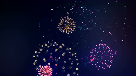 fişekçilik : Multicoloured fireworks are exploding in the sky. Happy new year concept.