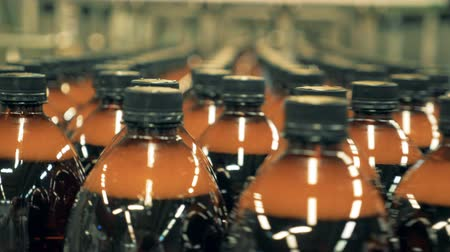 újrahasznosított : Bottles with beer on conveyor. Plastic bottles moving on a production line.