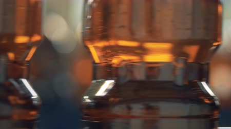 reciclado : Plastic bottles with beer, close up. Stock Footage