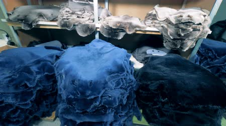yama işi : Lots of animal skins at a factory. Animal skin for clothes stacked in a room. Stok Video