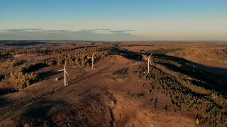 capacidade : Several wind turbines in sunset. Wind energy, wind electricity generation concept. Vídeos