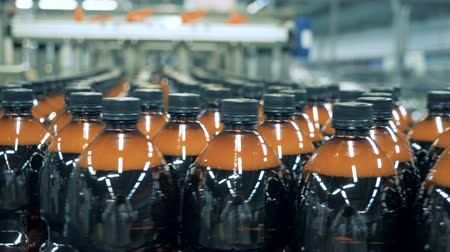 purificado : Multiple plastic bottles of beer are moving along the conveyor