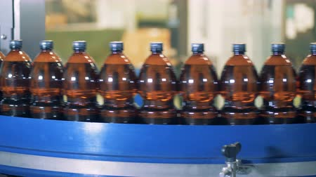conservado : Row of bottles filled with beer moving along the conveyor