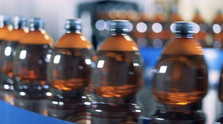 plněné : Bottles with beer moving on a line in row, close up.