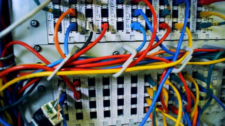 provider : A server with colored cables, close up.