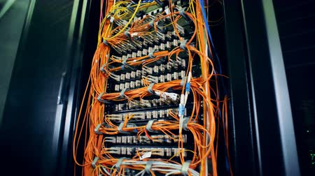 consumir : A system with plugged cables placed at a data center. 4K. Stock Footage