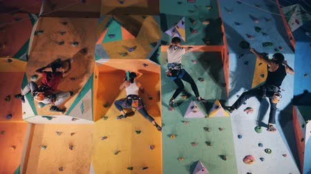 bouldering : Four people climbing on a training wall, close up.