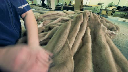 skins : Furs of mustelids are being stroked by the hands of a factory worker Stock Footage